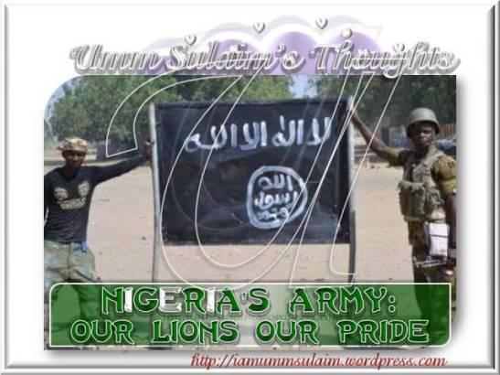 OPERATION SIX WEEKS - Nigerian Military Against Boko Haram 2